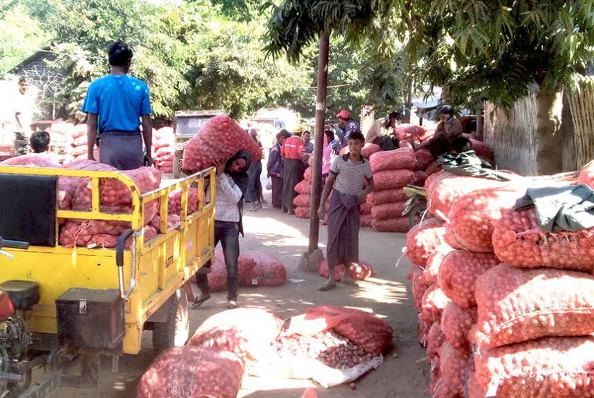 ပခုက္ကူကြက်သွန်စျေးကွက် မိုးကြက်သွန်တန်းတွင် ရောင်းဝယ်နေစဉ်